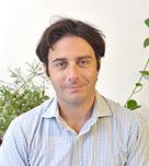 Andy Freedman